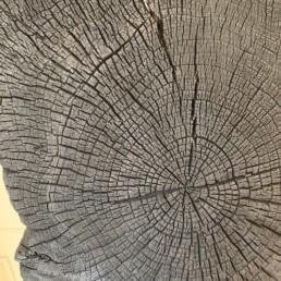 CHENE BRULE - anouste - ébéniste bordelais - pièce unique - bois brûlé
